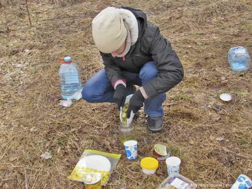 сажа засыпает жилмассив весенний в новосибирске